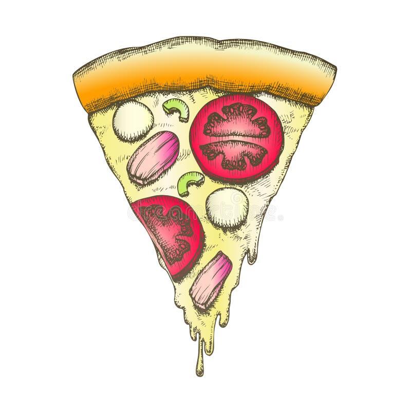 Vector italiano vegetal del vintage de la pizza del pedazo de la rebanada del color libre illustration