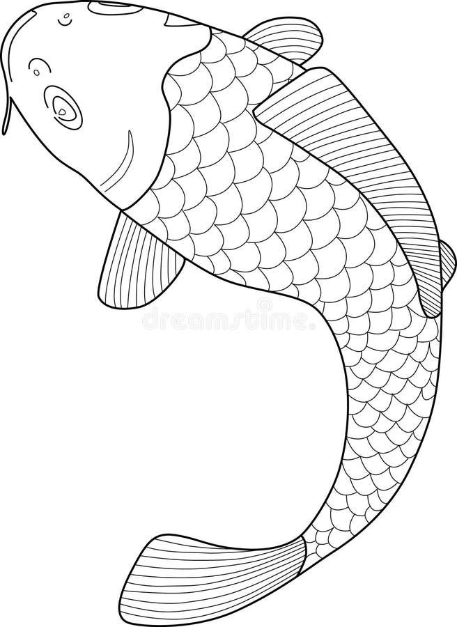 Vector japonés de los pescados de Koi ilustración del vector