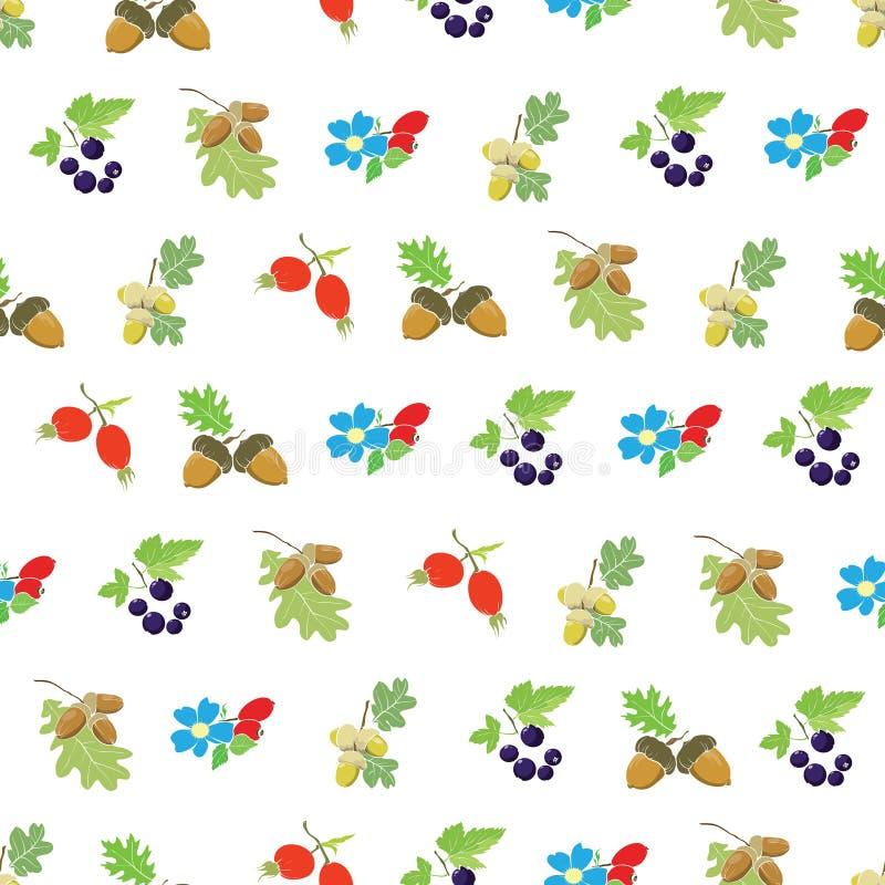 Vector Kleurrijk Autumn Berries Nuts Seamless royalty-vrije illustratie