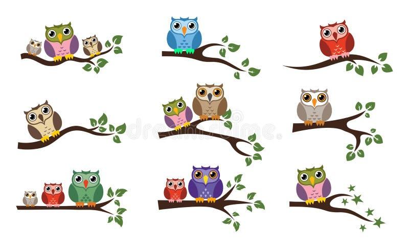 Vector kleurrijke uilzitting op boomtak vector illustratie