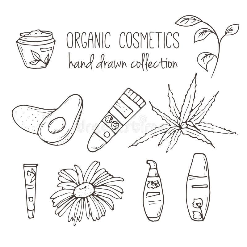 Vector kosmetische flessen Organische schoonheidsmiddelenillustratie De zorgpunten van de krabbelhuid Kruidenhand getrokken reeks stock illustratie