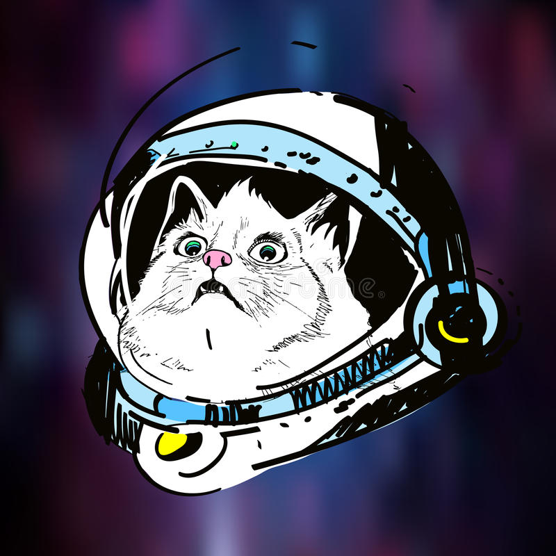 Vector Kunst, Skizze, Illustration, Druck auf T-Shirt, überraschte Katze im äußeren Sturzhelm im Raum, Tätowierung lizenzfreie abbildung