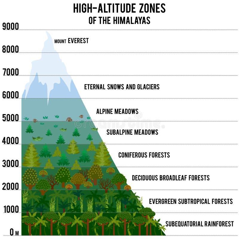 Vector l'illustrazione con le zone ad alta altitudine dell'Himalaya illustrazione di stock