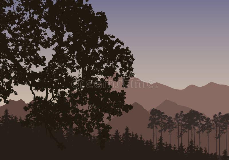 Vector l'illustrazione con una siluetta di uno spirito della foresta di conifere illustrazione di stock