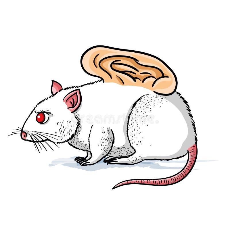 Vector l'illustrazione del topo bianco con una i dentro innestata orecchio umano royalty illustrazione gratis