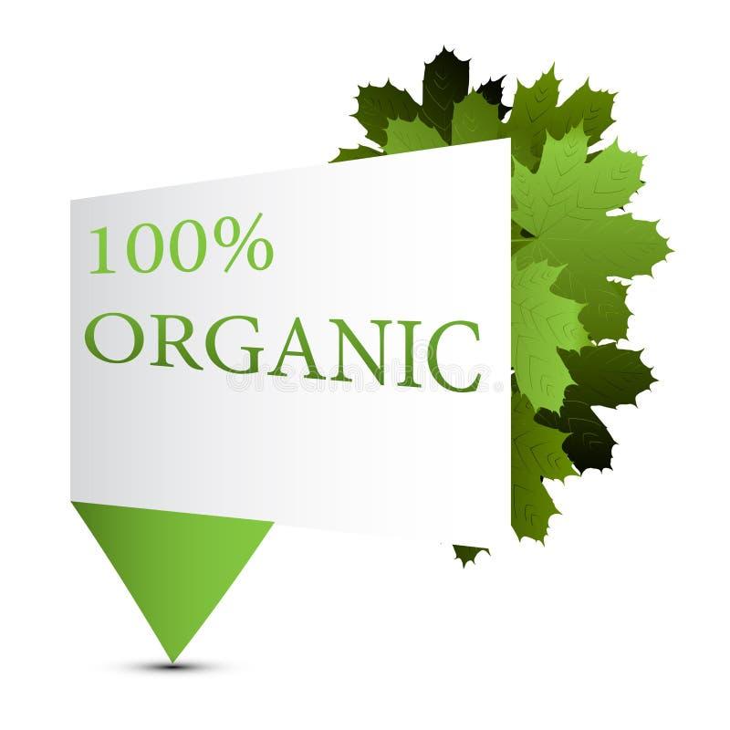 Vector l'illustrazione di organico con i rami e le foglie della molla fotografia stock libera da diritti
