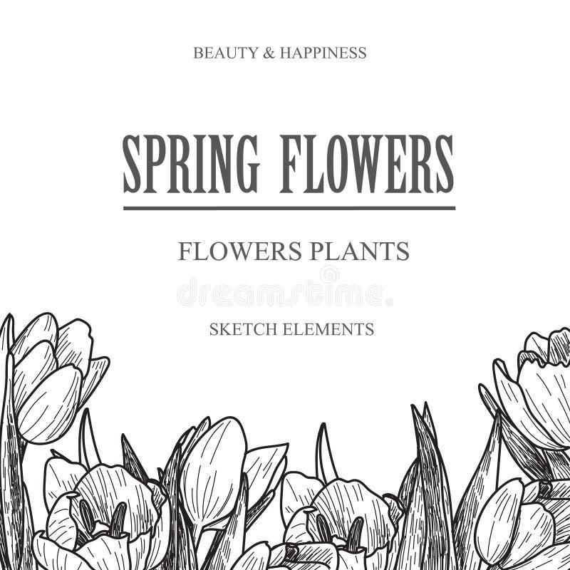 Vector la bandera del diseño para la floristería y la tienda florística con el ejemplo dibujado mano de las flores Bosquejo del r stock de ilustración