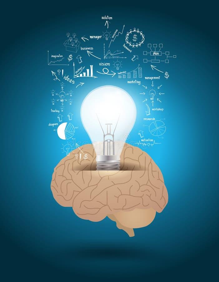 Vector la bombilla con stra del negocio del dibujo del cerebro stock de ilustración
