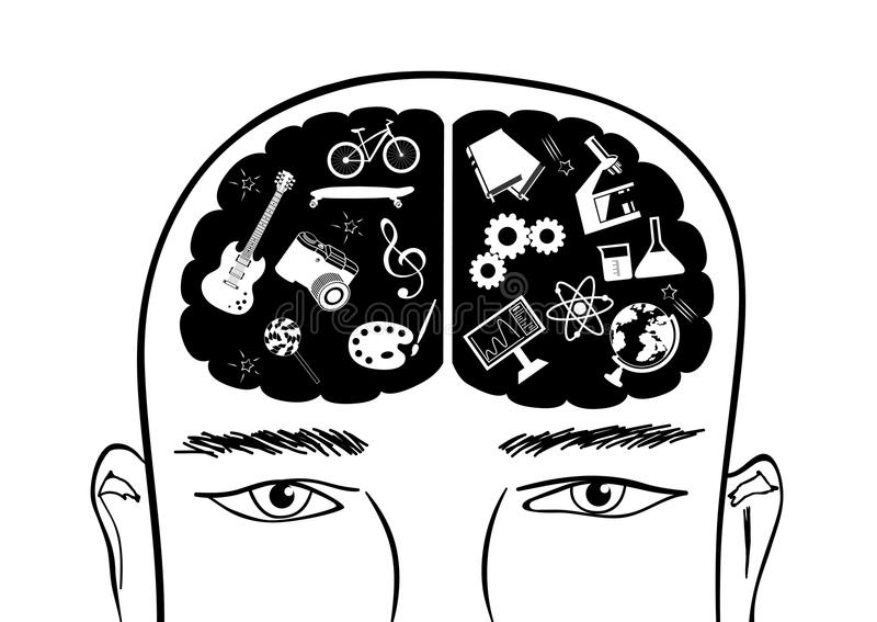 Vector la cabeza con hemisferios cerebrales correctos e izquierdos del cerebro ilustración del vector
