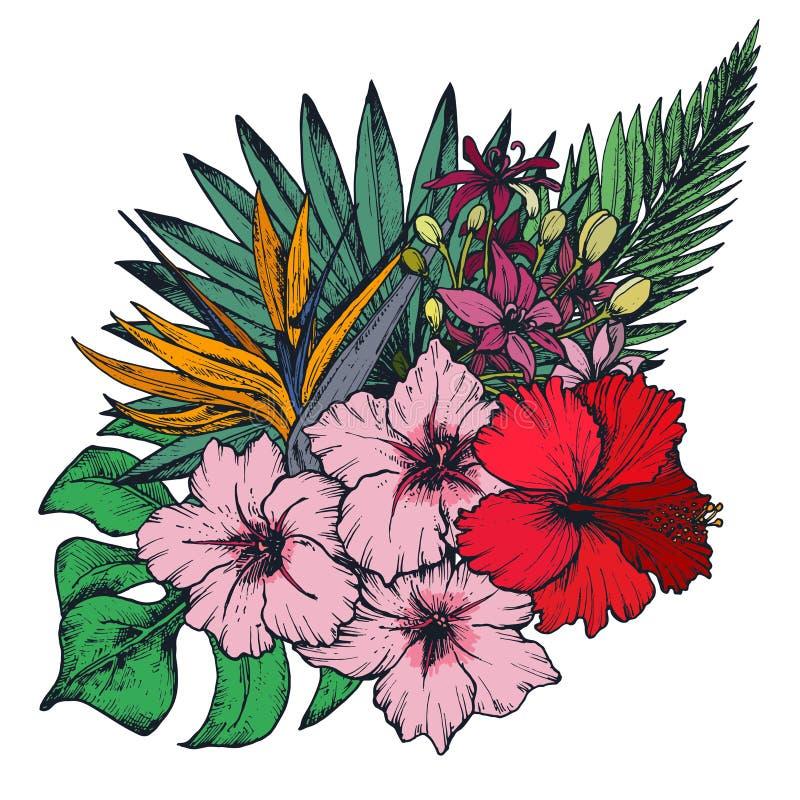 Vector la composición de las flores tropicales dibujadas mano, hojas de palma, plantas de la selva libre illustration