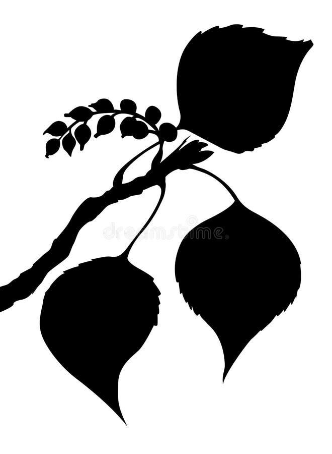 Vector la hoja del álamo libre illustration