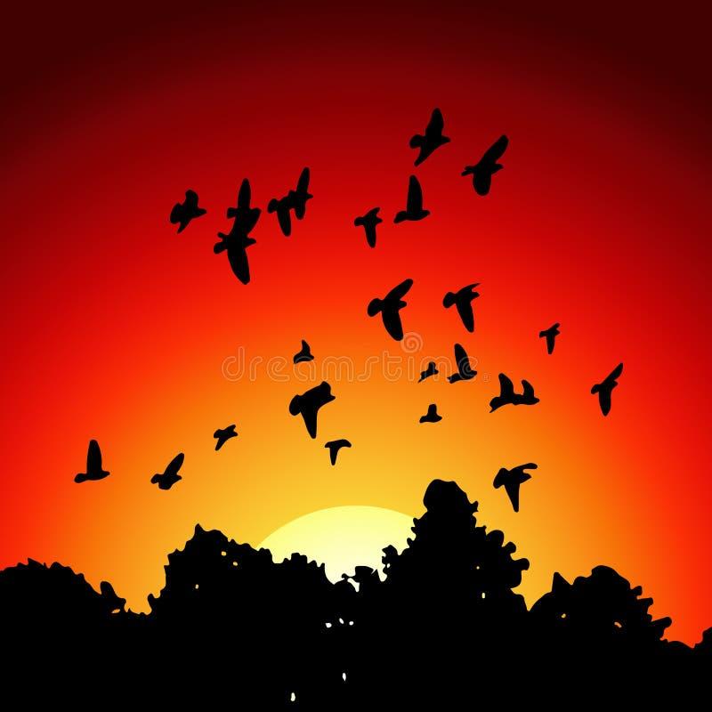 Vector la imagen de siluetas negras de una multitud de palomas stock de ilustración