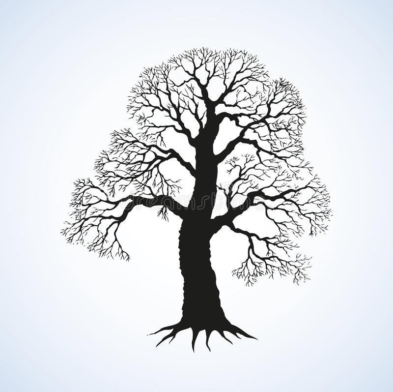 Vector la imagen del árbol poderoso con las ramas desnudas libre illustration