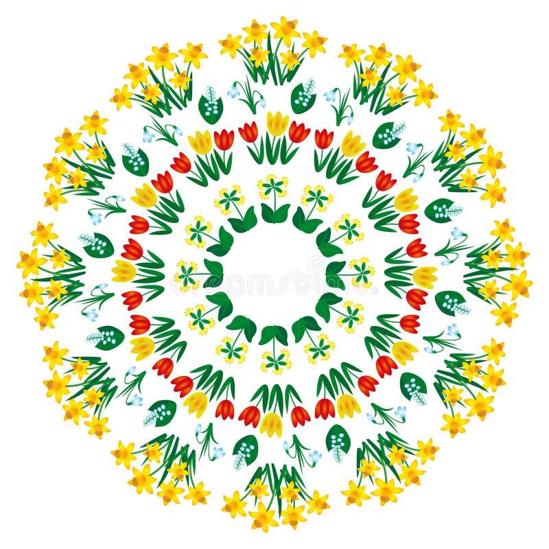 Vector la mandala floral coloreada de la primavera - página adulta del libro de colorear - tulipán, dafodil, snowdrop, primavera  ilustración del vector