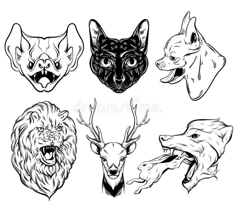 Vector la raccolta dell'illustrazione realistica disegnata a mano degli animali illustrazione di stock