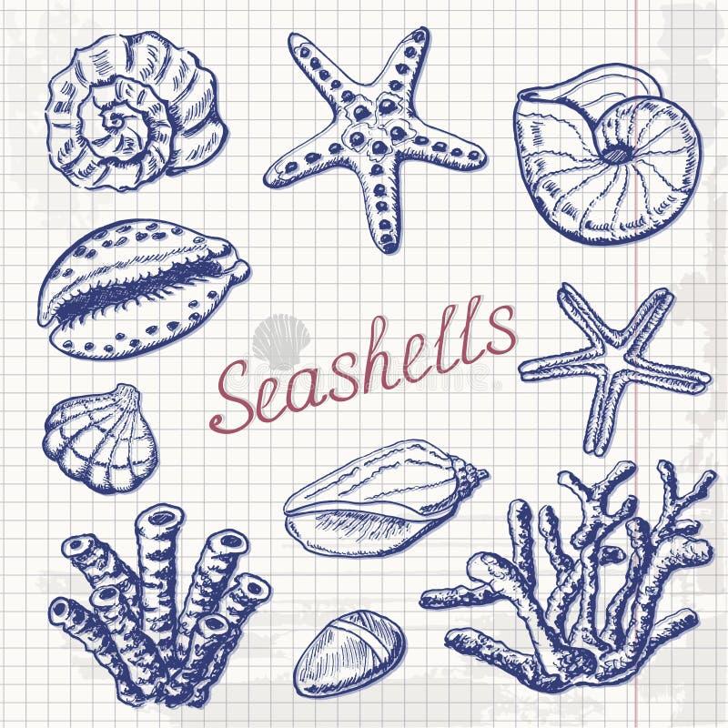 Vector la raccolta delle conchiglie, del corallo e delle stelle marine su carta Illustrazione del disegno della mano illustrazione vettoriale