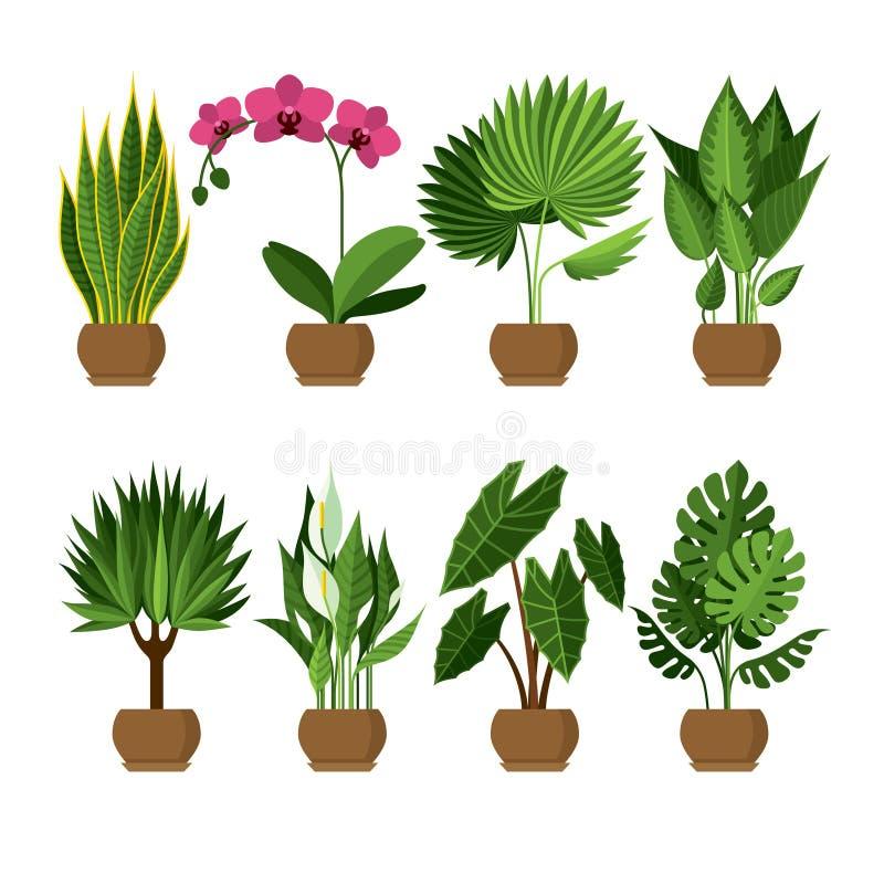 Vector la raccolta di dell'interno, piante della casa in vasi royalty illustrazione gratis