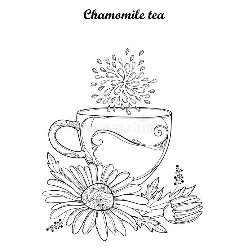Vector la taza de infusión de hierbas de la manzanilla aislada en el fondo blanco Resuma la flor de la manzanilla y el pétalo ado libre illustration