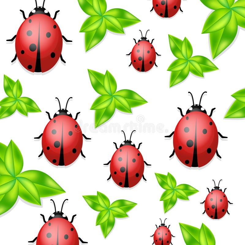 Vector ladybirds collection. White background with ladybugs. Trendy template for a postcard, stamp, banner or poster royalty free illustration