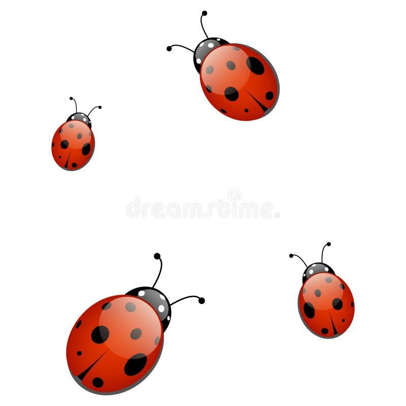 Vector ladybirds pattern vector illustration