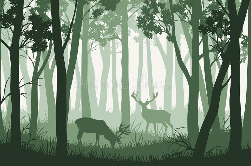 Vector landscape with green trees in forest and two deers vector illustration