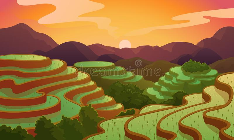 Vector landscape rice Chinese field terrace vector illustration