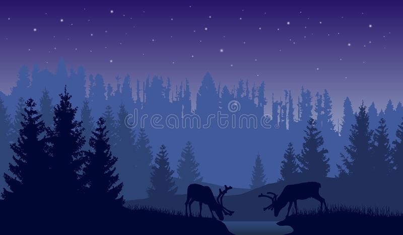 Vector landscape of two deer in a forest at night with dark blue background and sky with stars. vector illustration