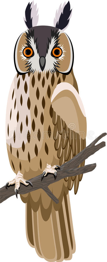 Vector lang-eared uil royalty-vrije illustratie