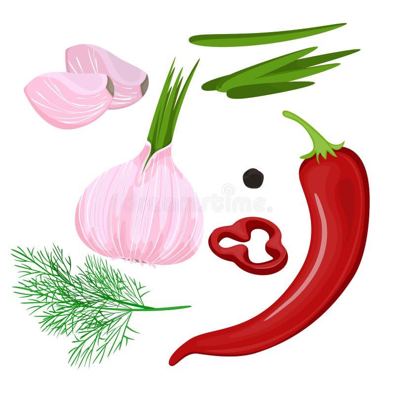 Vector las especias del bosquejo de la historieta, el condimento, las condimentaciones dibujadas mano plana y las hierbas de la c ilustración del vector