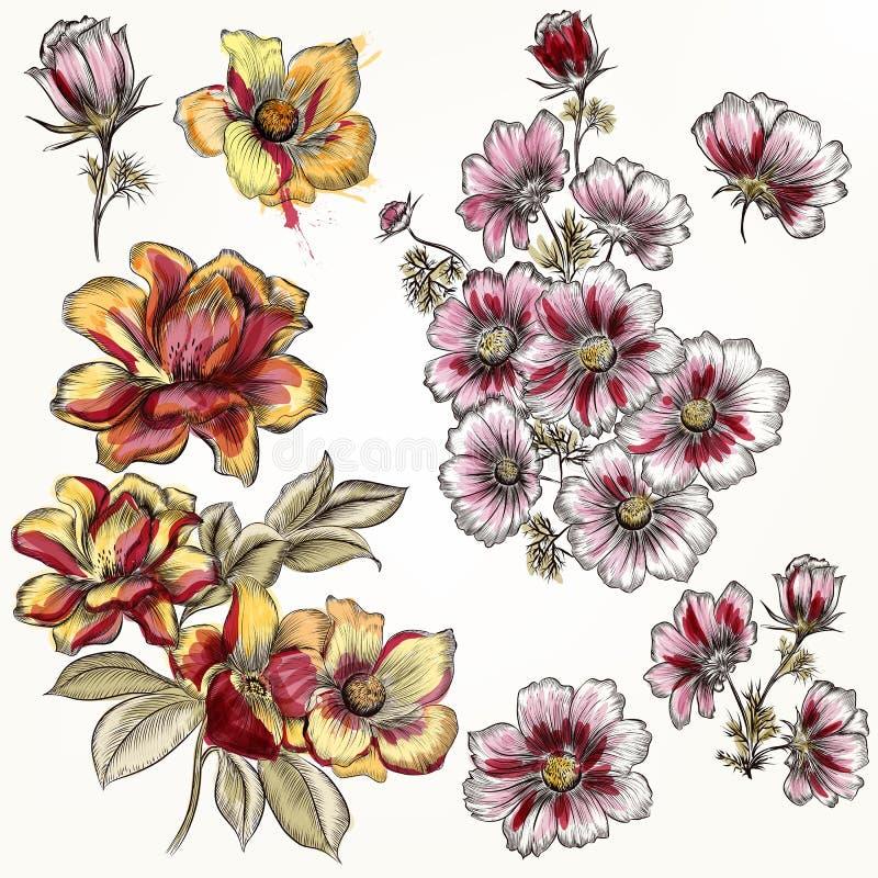 Download Vector Las Flores Dibujadas Mano En Estilo Grabado Y De La Acuarela Ilustración del Vector - Ilustración de grabado, fondo: 64210507