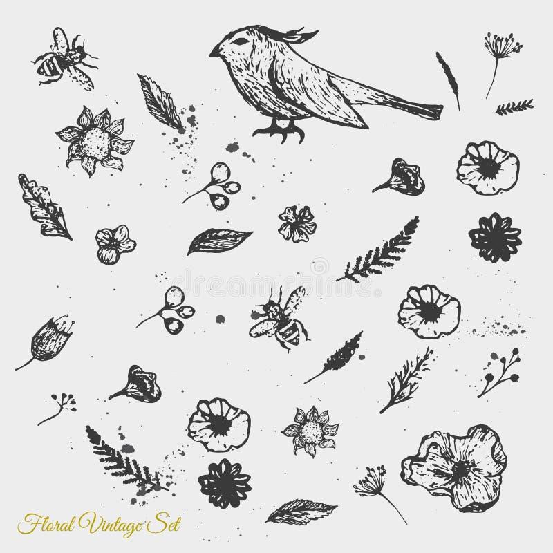 Vector las flores dibujadas mano linda del vintage con la abeja ilustración del vector