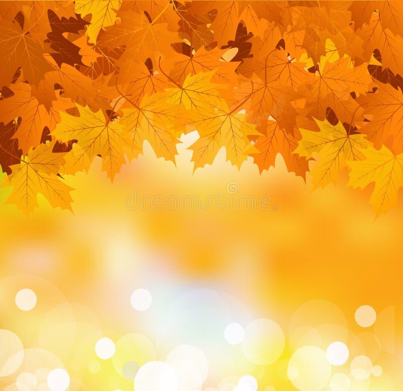 Vector las hojas de otoño en un fondo asoleado brillante stock de ilustración
