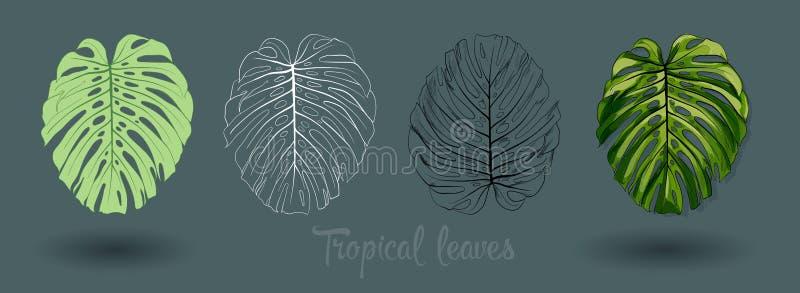 Vector las hojas tropicales exóticas, sistema del follaje de la selva aislado en el fondo blanco Estilo colorido plano stock de ilustración