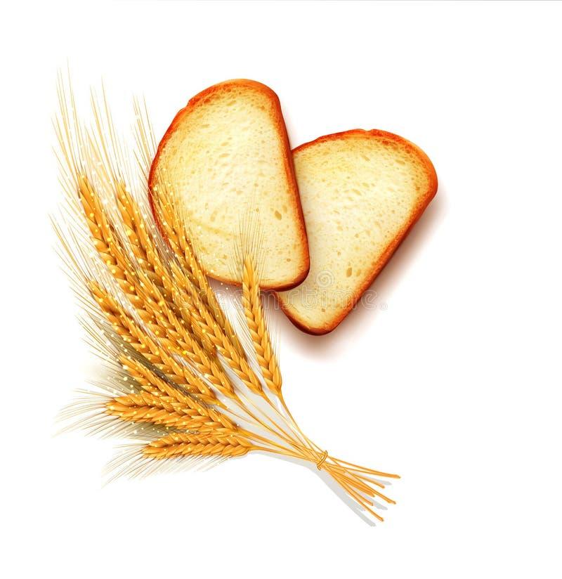Vector las partes del aislamiento de mentira cortado del pan del pan ilustración del vector