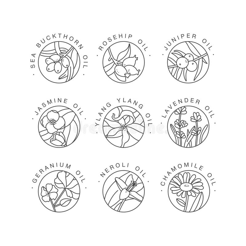 Vector las plantillas del dise?o determinado y los emblemas - sanos y los aceites de los cosm?ticos Diversos aceites naturales, o libre illustration