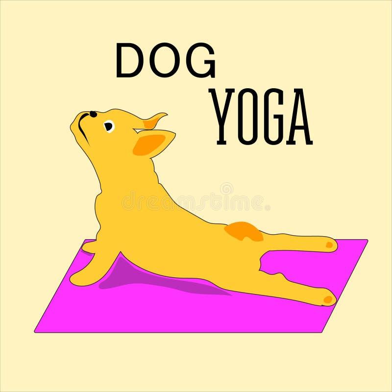 Vector las posturas pintadas a mano de la yoga con los animales de la historieta en diversas actitudes para el cuidado del cuerpo libre illustration