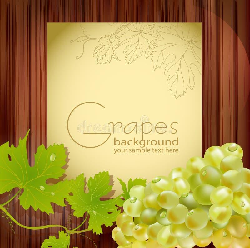 Vector las uvas frescas con gotas ilustración del vector