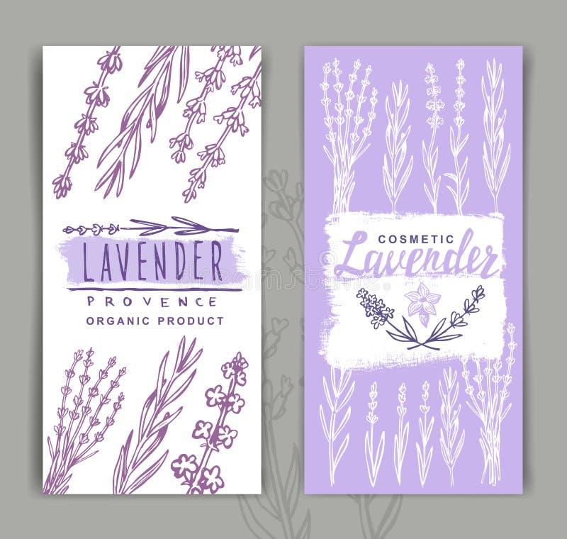 Vector lavender background vector illustration