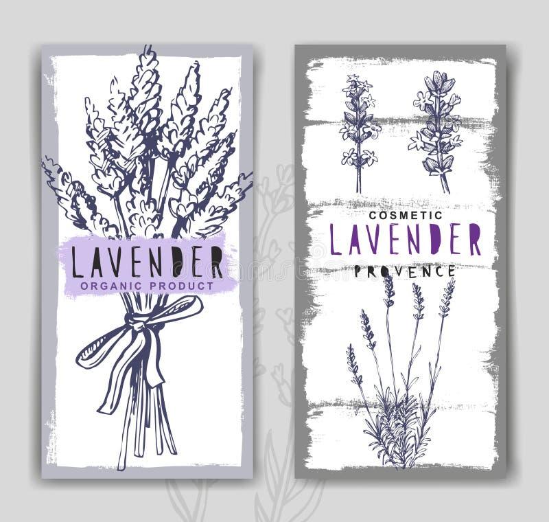Vector lavender background stock illustration