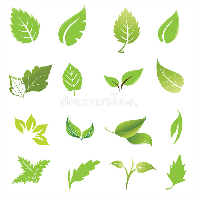 Vector leave icon set in style stock illustration