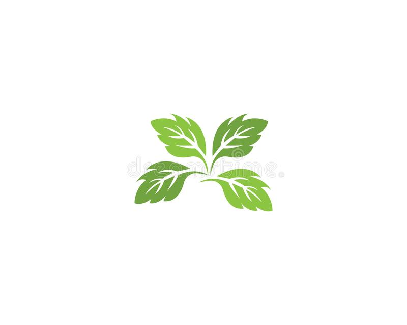 Vector leaves green nature logo template symbol. Vector leaves green nature logo template symbol royalty free illustration