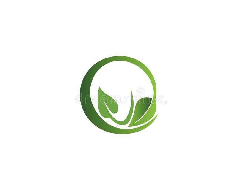 Vector leaves green nature logo template symbol. Vector leaves green nature logo template symbol vector illustration