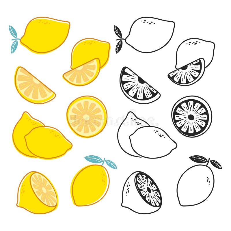 Vector lemon cuts, yellow and black and white citrus fruits vector set royalty free illustration