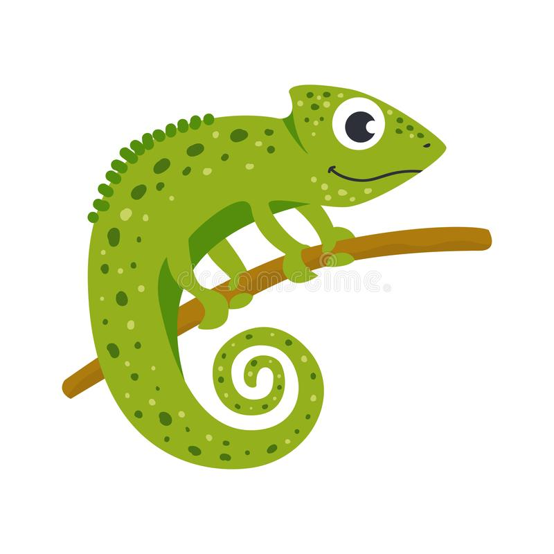 Vector leuk Afrikaans dier chameleon Grappig karakter voor jonge geitjes stock illustratie