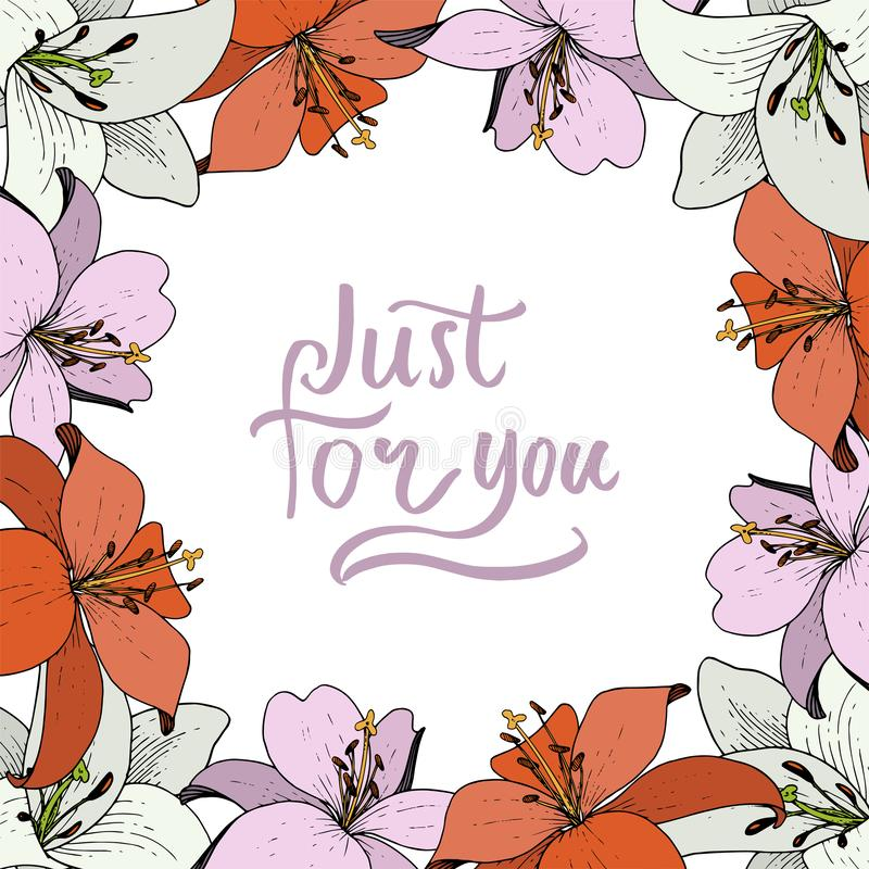 Vector Lily botanical flower. Wild spring leaf wildflower isolated. Engraved ink art. Frame border ornament square. Vector Lily floral botanical flower. Wild royalty free illustration