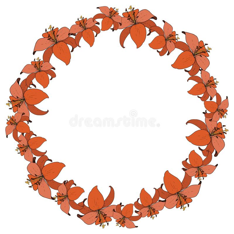 Vector Lily botanical flower. Wild spring leaf wildflower isolated. Engraved ink art. Frame border ornament square. Vector Lily floral botanical flower. Wild vector illustration