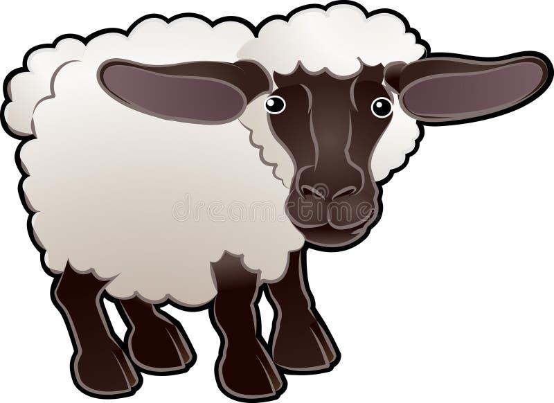 Vector lindo del animal del campo de las ovejas   stock de ilustración