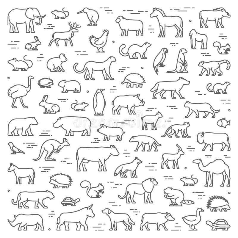 Vector line concept for american, african and australian animals royalty free illustration