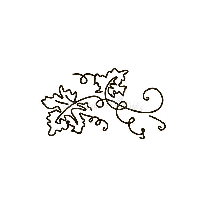 Vector Line icon. Grape leaves. One line drawing. Isolated on white background royalty free illustration