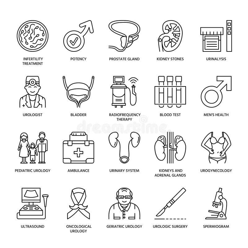 Vector line icons of urology. Elements - urologist, bladder, oncological urology, kidneys, adrenal glands, prostate. vector illustration